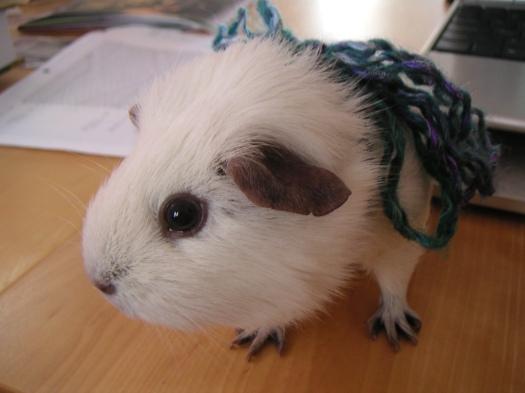 Opie, wearing Interlacement Yarn
