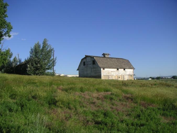 Bank Barn: June, 2009