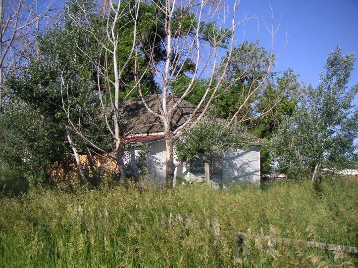 Farm House: June, 2009