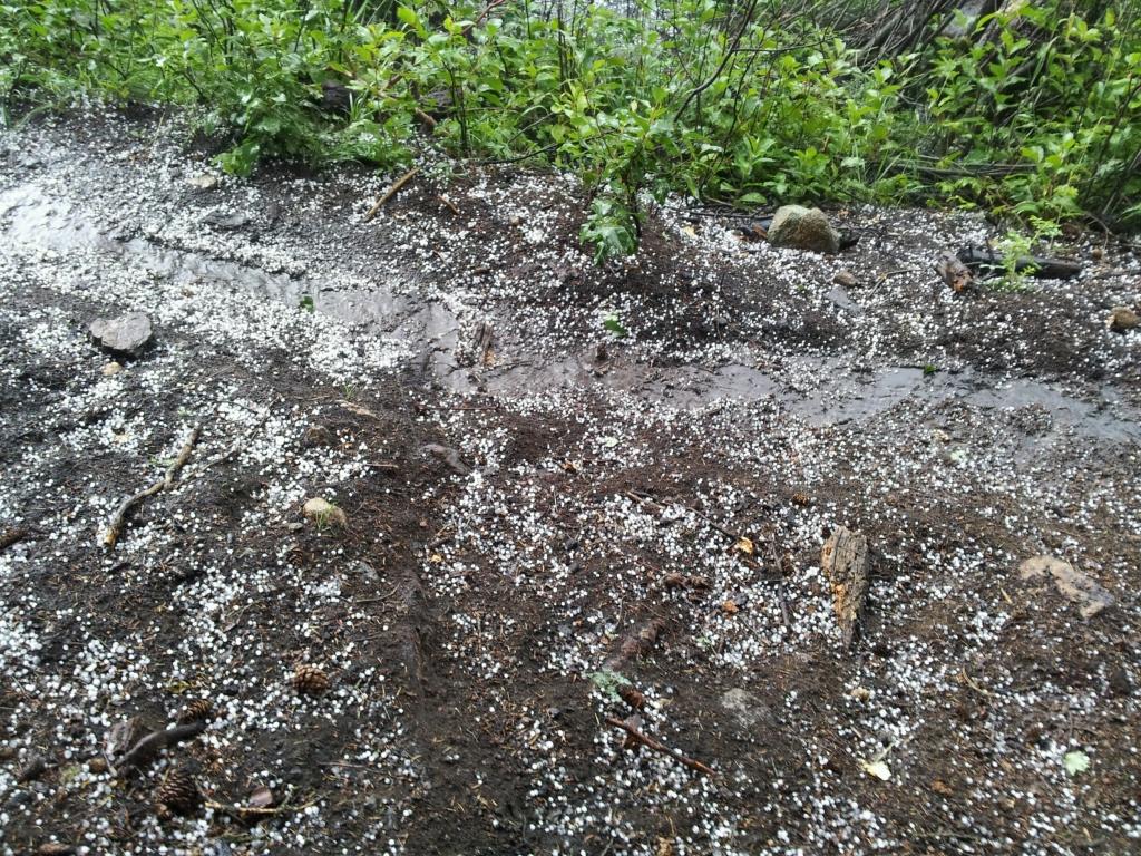 rmnp hail storm