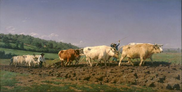 800px-Rosa_Bonheur_-_Ploughing_in_Nevers_-_Google_Art_Project