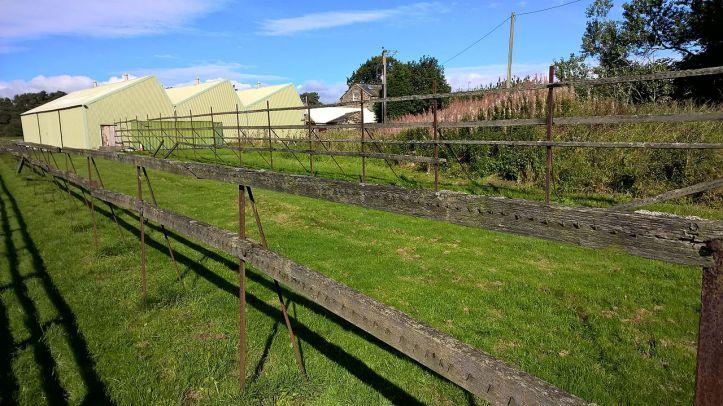 Tenter_Frames,_Otterburn_Mill,_Northumberland (1)